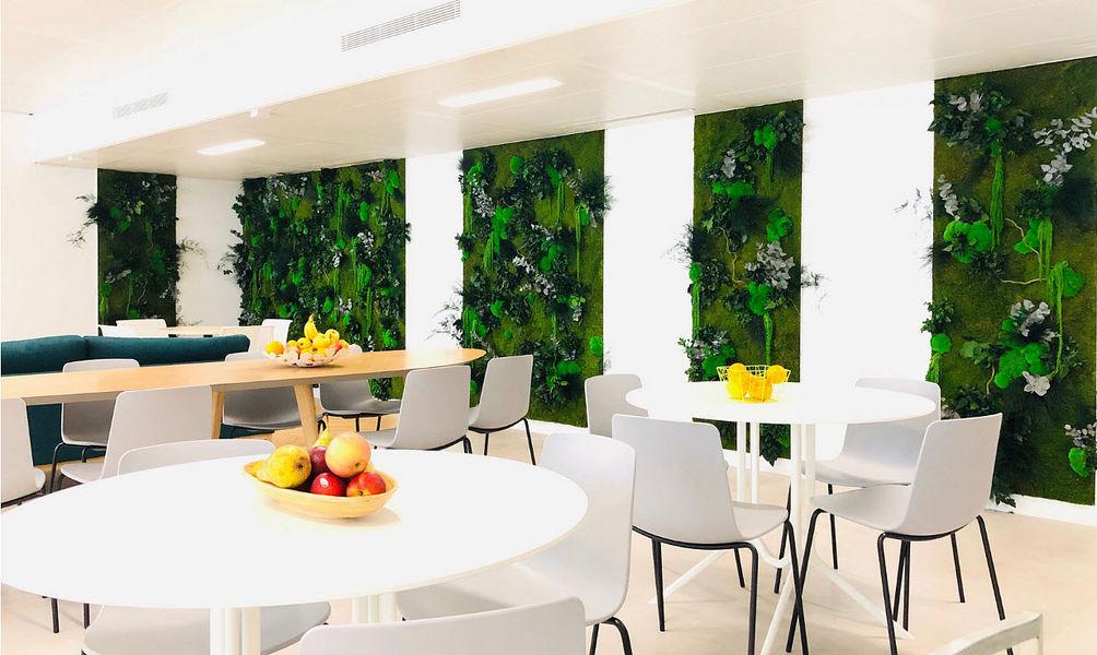 Vegetal  Indoor Mur végétalisé Arbres et plantes Fleurs et Senteurs  |