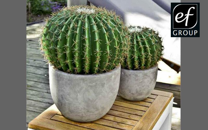 Euroflor Plante artificielle Arbres et plantes Fleurs et Senteurs  |