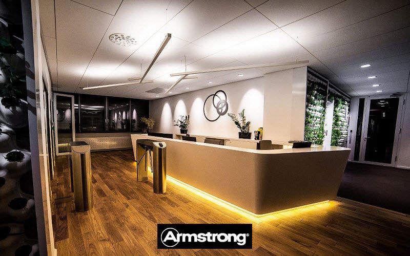 ARMSTRONG Plafond acoustique Plafonds Murs & Plafonds  |