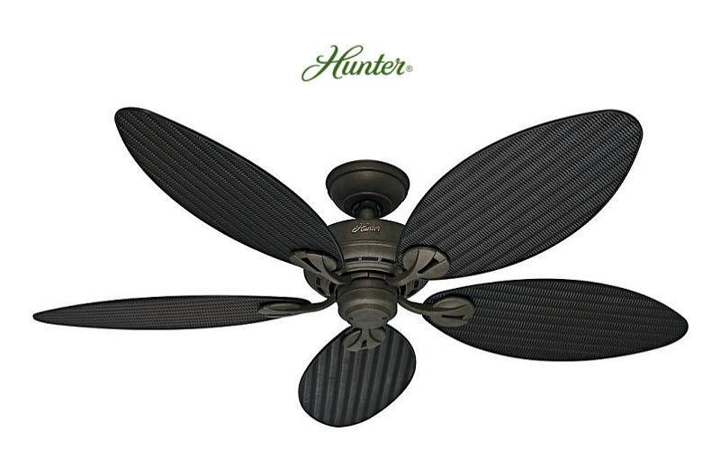 HUNTER Ventilateur de plafond Climatisation Ventilation Equipement  |