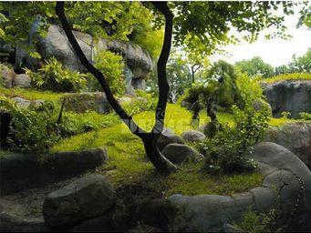 Magel'design - eden little tree 120x80 cm , 3d effet relief - Tableau Contemporain