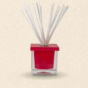 Synopsis Paris - diffuseur de parfum so cube rouge (2 mois) - Diffuseur De Parfum Par Capillarité
