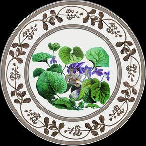 Au Bain Marie -  - Assiette Plate