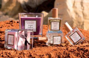 Collines De Provence - cassis & camélia - Bougie Parfumée