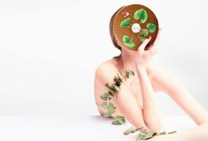 Raynaud - --trésor fleuri - Assiette Plate