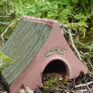 Wildlife world - ceramic frog & toad house - Grenouille