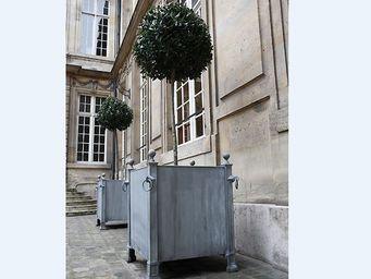 Jardinieres & Interieurs -  - Bac D'orangerie