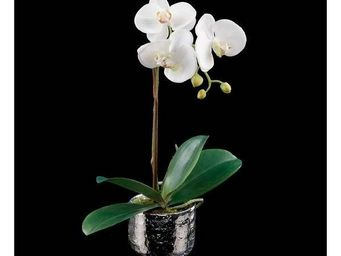 Deco Factory - orchid�e artificielle simple pot argent silver - Composition Florale