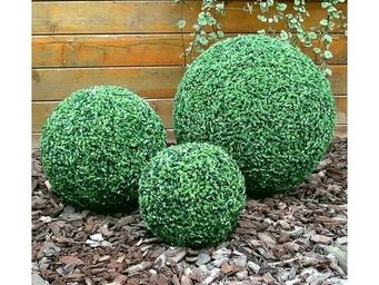 Deco Factory - buis boule artificiel florence � 50 cm - Arbre Artificiel