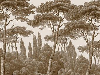 Ananb� - pins et cypr�s sepia - Papier Peint Panoramique