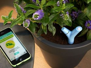 PARROT - _flower - Capteur Pour Plantes