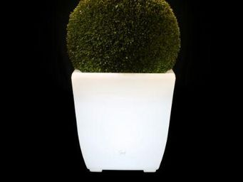 SENS COLLECTION - pot lumineux - buis artificiel - Pot Lumineux