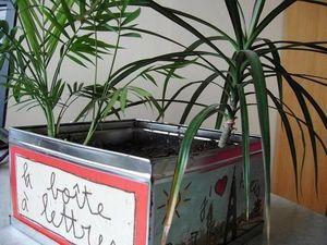 Druart -  - Pot De Fleur