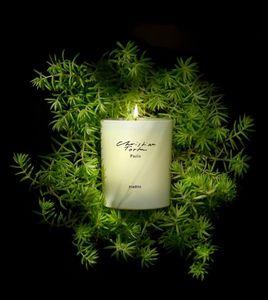 Christian Tortu Bougies - feuillage - Bougie Parfumée