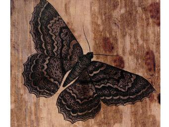 Interior's - tableau papillon - Tableau D�coratif