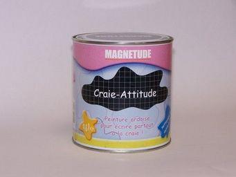Magnetude - craie-attitude - Peinture Murale