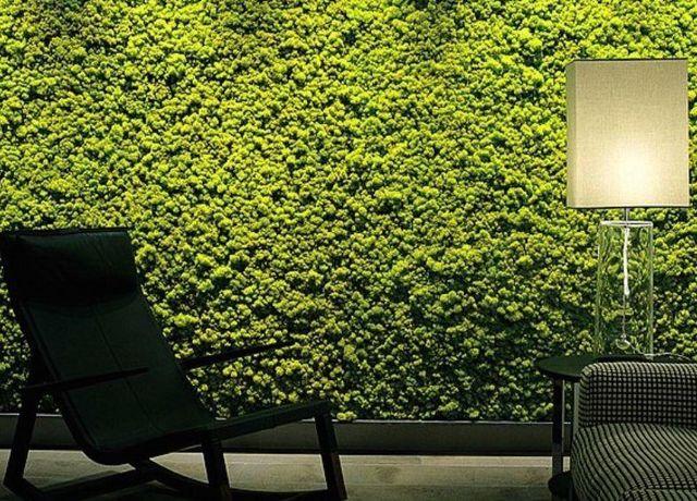 Vegetal  Indoor - Mur végétalisé-Vegetal  Indoor