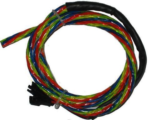 NEON FLEX LASER - Neon flexible-NEON FLEX LASER