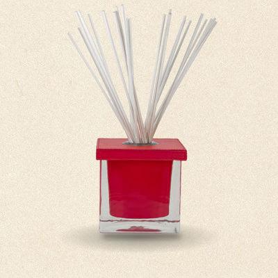 Synopsis Paris - Diffuseur de parfum par capillarité-Synopsis Paris-Diffuseur de parfum So Cube Rouge (2 mois)