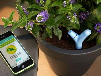 PARROT - Capteur pour plantes-PARROT
