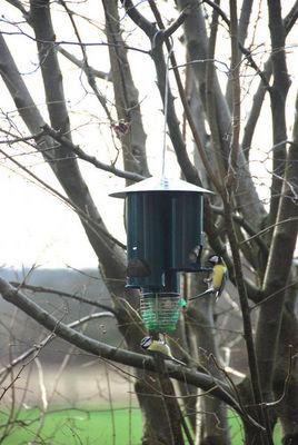 BEST FOR BIRDS - Mangeoire à oiseaux-BEST FOR BIRDS-Distributeur de nourriture triangle en métal 21x55