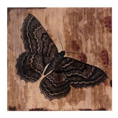 Interior's - Tableau d�coratif-Interior's-Tableau Papillon