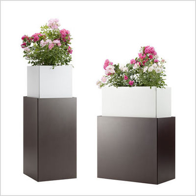 Flora - Bac à fleurs-Flora