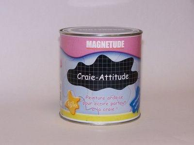 Magnetude - Peinture murale-Magnetude-Craie-Attitude