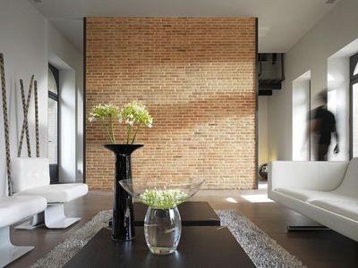 Orsol - Brique de parement-Orsol-BRIQUE