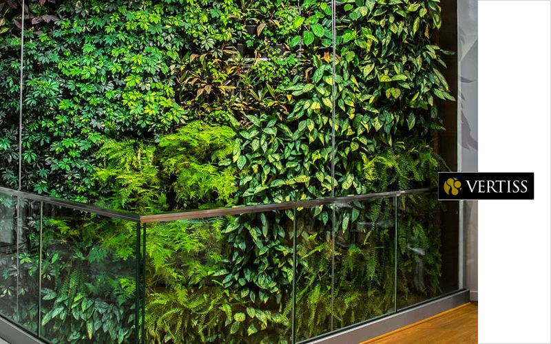 VERTISS Vegetal wall Vegetal walls Walls & Ceilings  |