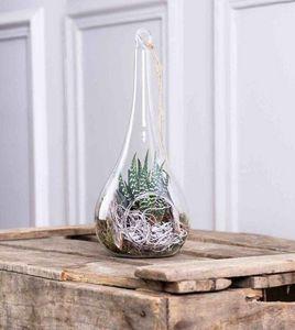 CAPRICE DES FLEURS -  - Terrarium Garden Under Glass
