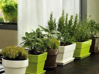 DEROMA France - galéade - Garden Pot