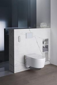 GEBERIT AQUACLEAN -  - Wall Mounted Toilet