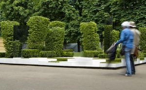 THIERRY DALCANT -  - Landscaped Garden