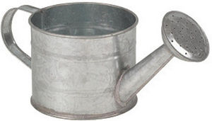 Aubry-Gaspard - arrosoir 75cl en zinc - Watering Can
