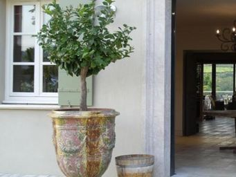 TERRES D'ALBINE - roy soleil - Anduze Vase