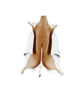 AFRICAN GALLERY -  - Animal Skin Rug