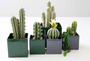 Asa Selection -  - Plant Pot Cover