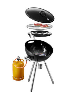 EVA SOLO - fireglobe - Gas Fired Barbecue