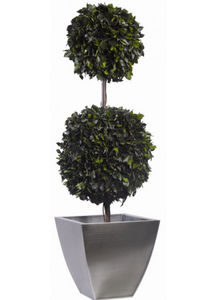 Element Vegetal - topiaire double - Preserved Plant