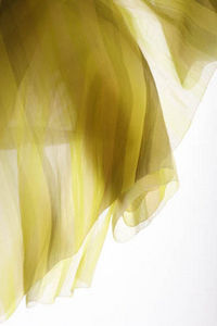 Eun Il Lee - samba - Net Curtain