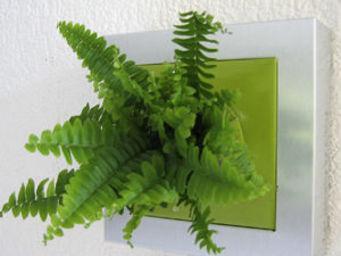 LES JARDINS DE CHLOE - tam tam -u-mb-gran - Organic Artwork