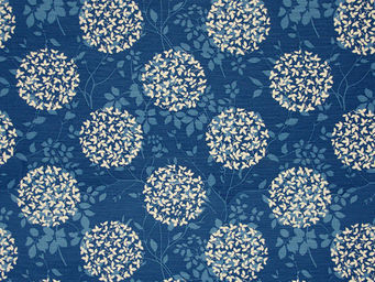 Equipo DRT - carioca azul - Printed Material