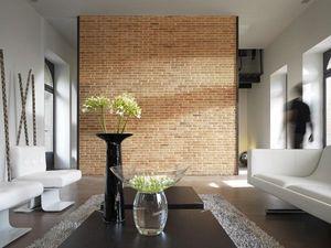 Orsol - brique - Facing Brick