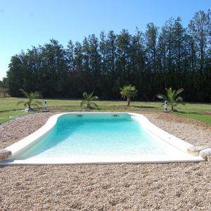 PISCINE PLAGE -  - Freeform Pool