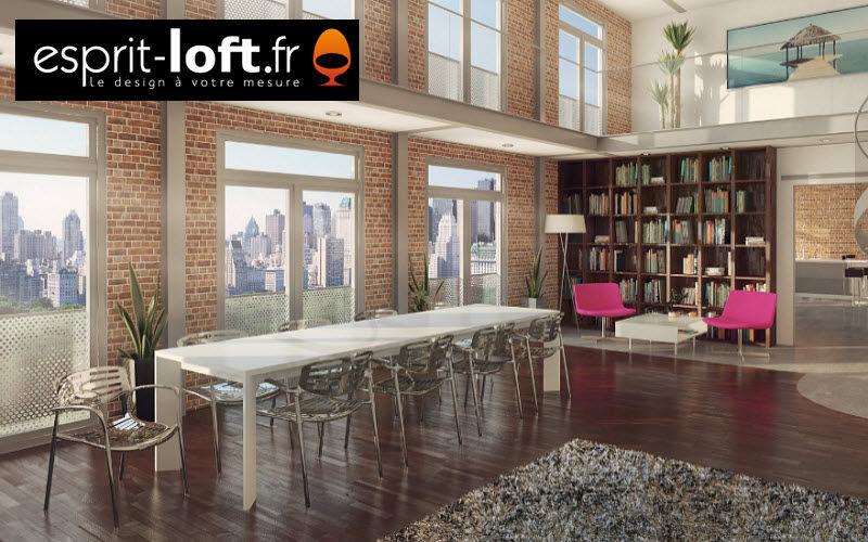 Esprit-Loft.fr     |