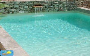 PISCINE PLAGE -  - Landschaftsswimmingpool