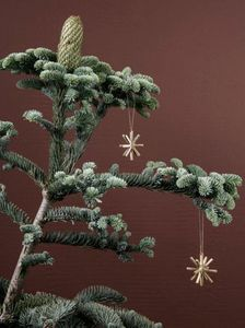 Ferm Living -  - Weihnachtsstern