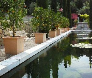 L'orangerie -  - Baumtopf