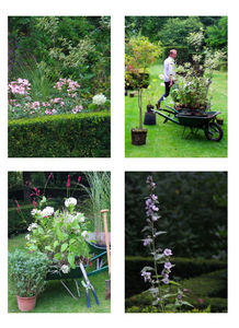 DRAW ME A GARDEN - jardin à la française - Landschaftsgarten